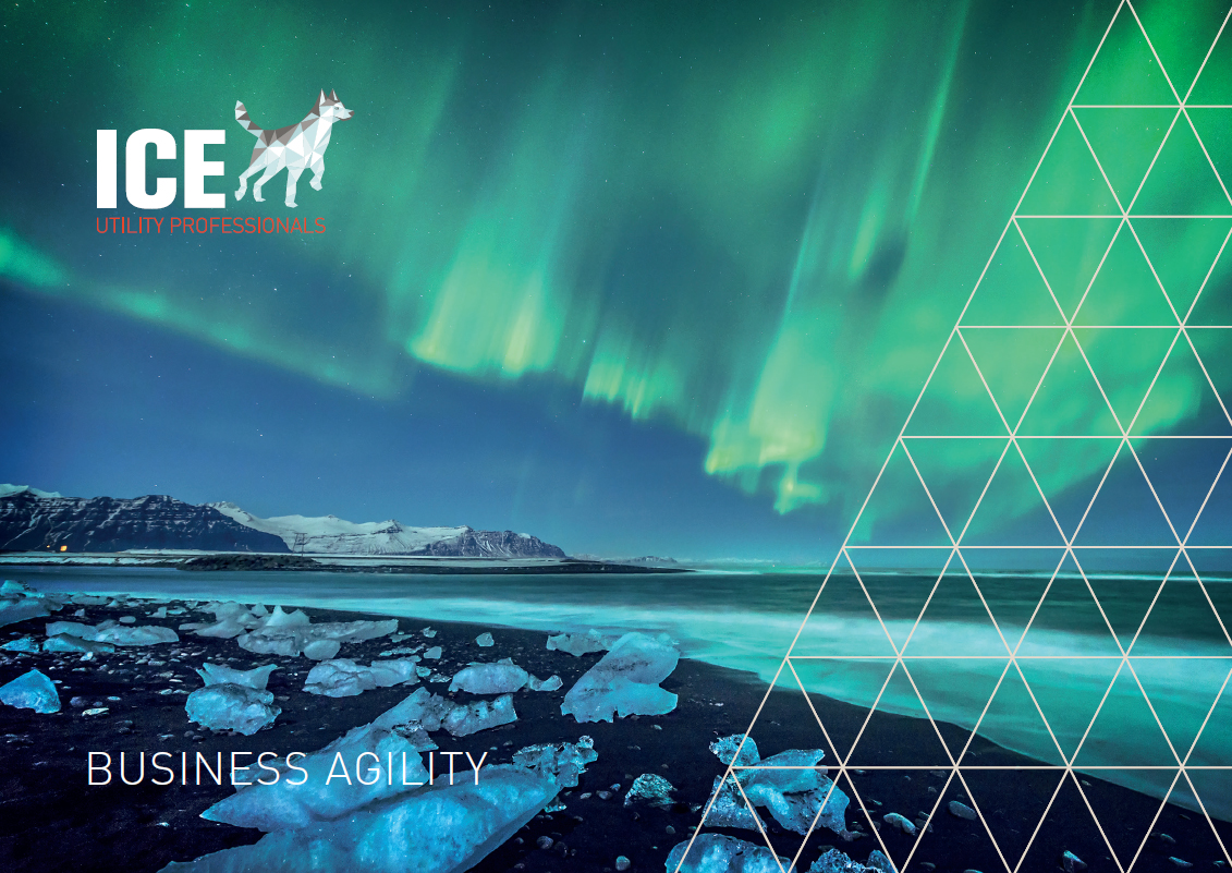 Business Agility Event